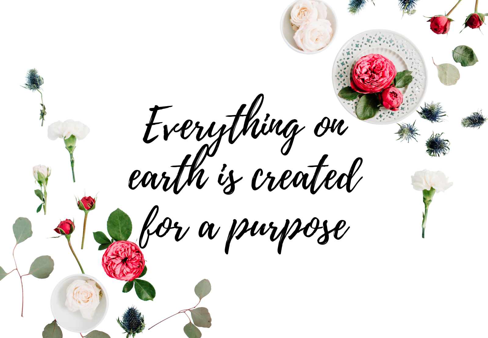 Everything on earth is created for a purpose